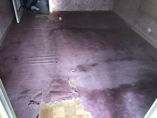 travaux renovation sol